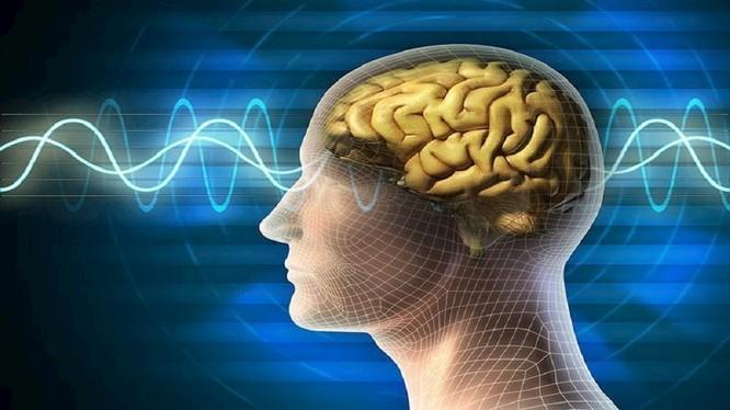 Sóng não có thể điều khiển cánh tay robot