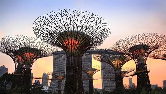 Với tốc độ truy cập Internet cao ở Singapore thì mức phí chi trả cũng không hề rẻ. ẢNH CHỤP MÀN HÌNH