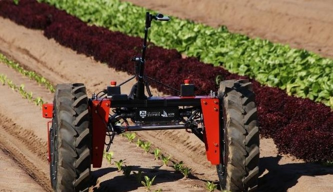 Robot Digital Farmhand, sản phẩm tuyệt vời của Agerris - Ảnh: Đại học Sydney