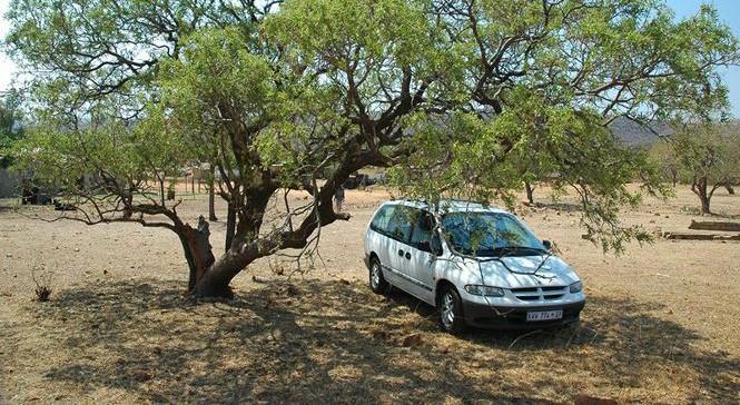Trời nóng nên đỗ xe dưới bóng cây hoặc những chỗ không có nắng