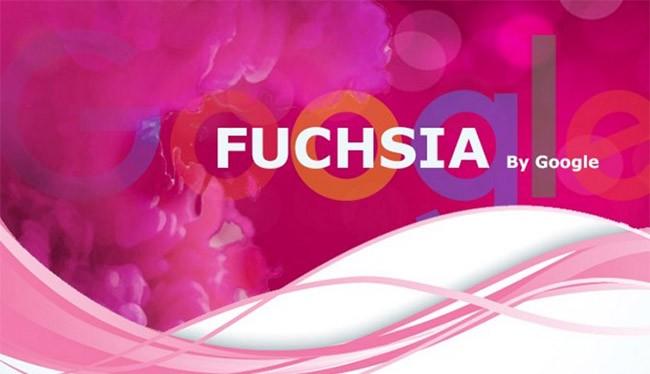 Hệ điều hành mới của Google có tên là Fuchsia