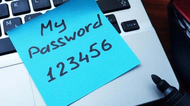 Không nên đặt mật khẩu kiểu 123456 (ảnh: SmallBussinessTrend)