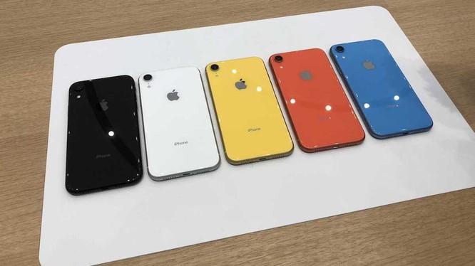 """iPhone Xr có 5 màu sắc (ảnh"""" Mac Rumors)"""