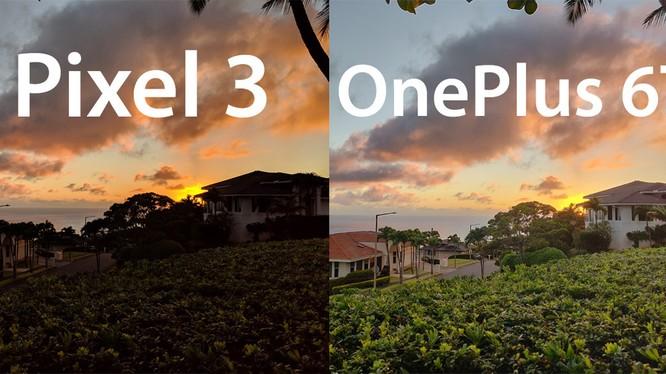 Pixel 3 chụp ảnh chưa hẳn đã đẹp hơn OnePlus 6T (ảnh: Business Insider)