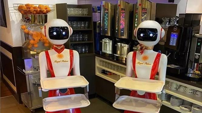 Robot phục vụ tại nhà hàng ở Hà Lan (ảnh: The Verge)