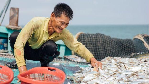 Thương mại điện tử là chìa khóa giúp người làm nông nghiệp và nghề cá tiêu thụ được nông sản và hải sản