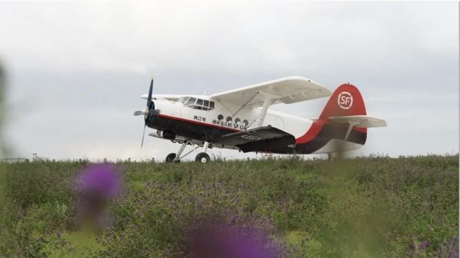 Máy bay không người lái dùng để vận chuyển hàng hóa của SF Holdings (ảnh: SCMP)
