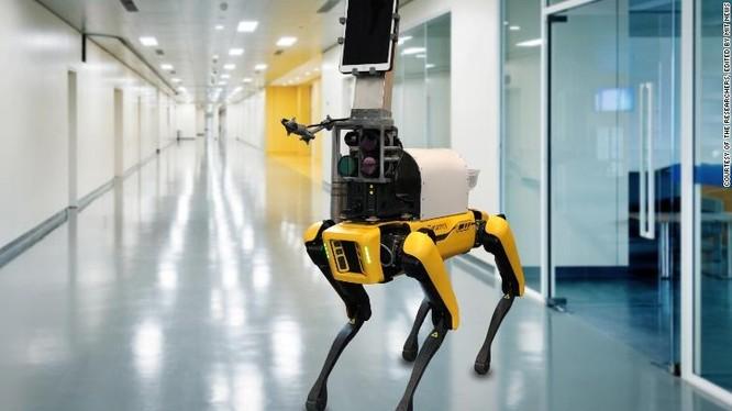 Chú chó robot này đang được nghiên cứu để đưa vào các bệnh viện khám cho bệnh nhân Covid-19 (ảnh: CNN)
