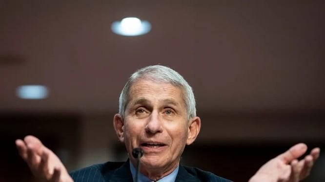 Tiến sĩ Anthony Fauci, giám đốc Viện Quốc gia về Dị ứng và Bệnh truyền nhiễm Hoa Kỳ (ảnh: Getty Images)