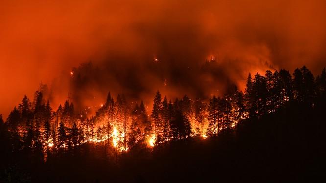 Nhiệt độ cao gây ra các đám cháy rừng ở California, Hoa Kỳ (ảnh: The Nature Conservancy)