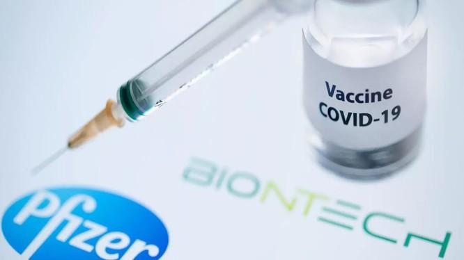 Vắc xin Covid-19 của Pfizer-BioNTech có thể được cấp phép lưu hành tại châu Âu trong vài tuần tới (ảnh: France 24)