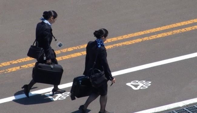 Tiếp viên hàng không là người nắm chắc các thủ thuật để bạn có một chuyến bay tuyệt vời (Ảnh Business Insider)