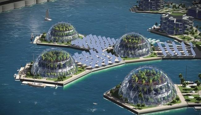 Mô hình dự án Đảo nổi ở Polysenia thuộc Pháp (Ảnh Seasteading Institute)