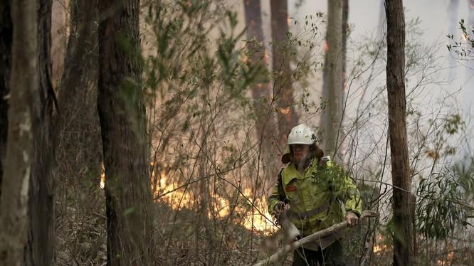 Australia đối mặt với những thiệt hại nặng nề do cháy rừng (Ảnh: AP)