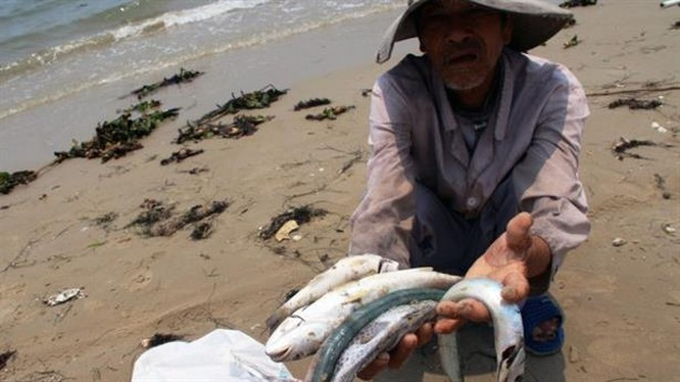 Gần 4.000 tấn hải sản tồn kho có thể bị tiêu hủy.