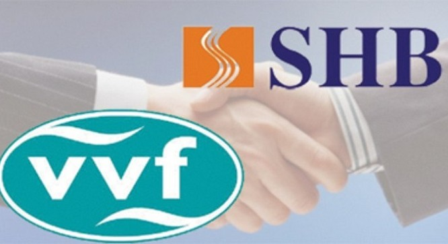 VVF đã chính thức sát nhập vào SHB - (Ảnh minh họa)