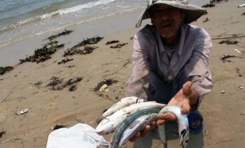 Ngư dân tại 4 tỉnh miền Trung đang chờ tiền đền bù thiệt hại từ sự cố môi trường Formosa.