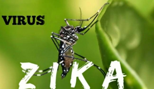 Bình Dương tăng cường quản lý, giám sát và theo dõi chặt chẽ tình hình diễn biến dịch bệnh do virus Zika trên địa bàn tỉnh.