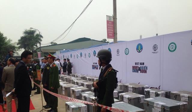 Buổi lễ tổ chức tiêu huỷ 2 tấn ngà voi ở Sóc Sơn
