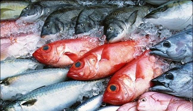 Chính phủ hỗ trợ giải quyết ngay lượng hàng hải sản tồn kho- (Ảnh minh họa).