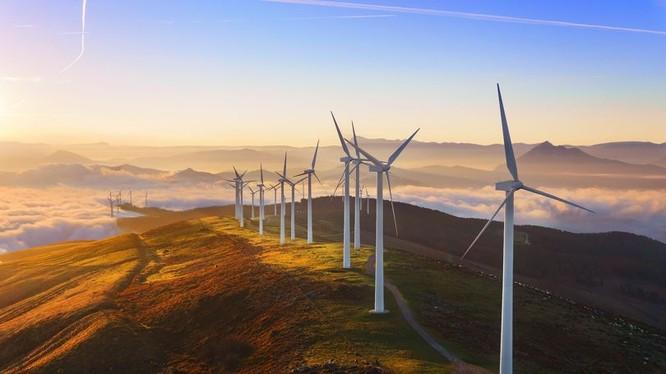 Google sẽ dùng 100% năng lượng tái tạo cho các trung tâm dữ liệu và văn phòng của hãng vào năm tới