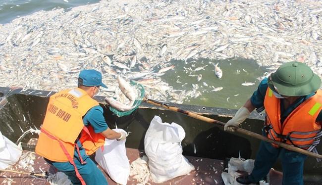 Công nhân môi trường vớt cá chết Hồ Tây đi tiêu hủy