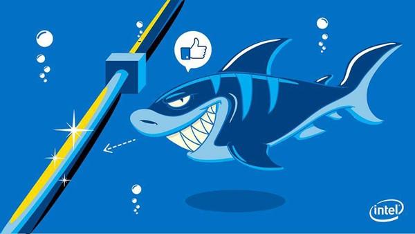 Cá mập rất hiếm khi cắn cáp quang biển. Ảnh minh họa