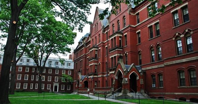"""""""Harvard là nơi người ta đeo lên mình những khuôn mặt giả tạo chính đáng"""""""