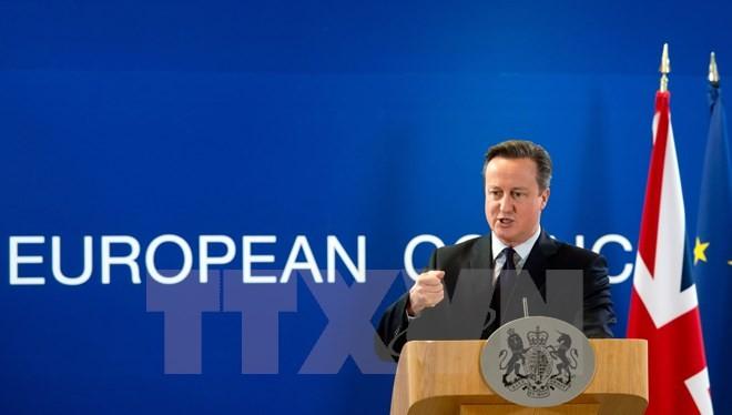 Thủ tướng Anh David Cameron. (Nguồn: AFP/TTXVN)