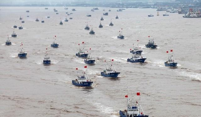 National Interest ước tính Trung Quốc ước tính có khoảng 700.000 tàu cá