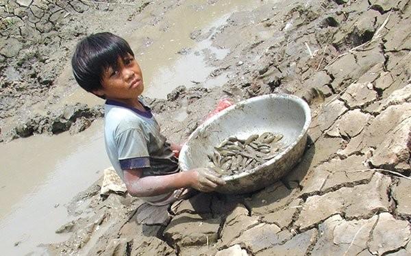 Ảnh: Nguyễn Huệ Nghi