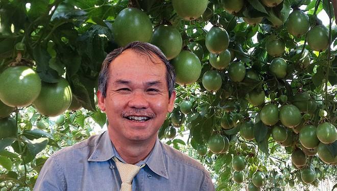 Hé lộ 1.625 ha vườn cây ăn trái HAG vừa mua trong thương vụ 2.500 tỷ đồng. (Ảnh: Internet)