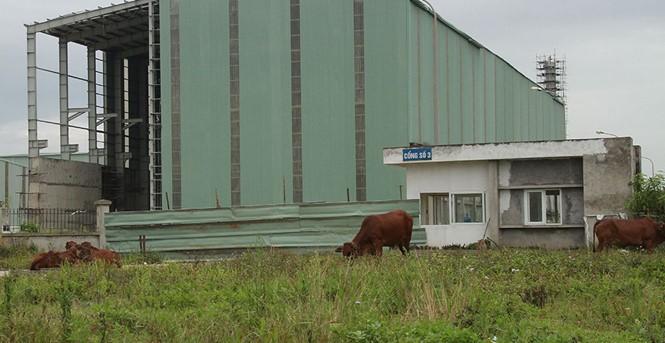 Ethanol Phú Thọ đã tiêu tốn hơn 1.534 tỷ đồng nhưng vẫn dang dở, bế tắc... (Ảnh: Thanh Niên)