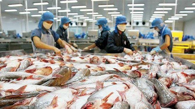 Mỹ đã giảm bớt áp lực lên Việt Nam liên quan thuế chống bán phá giá với sản phẩm cá da trơn Việt Nam. (Ảnh: Internet)