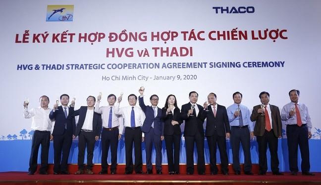 Thadi đã chính thức hiện diện ở HVG.