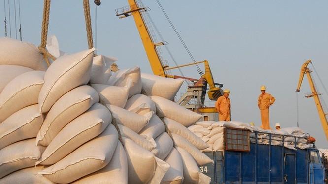 Ngành gạo sẽ hưởng lợi tích cực từ EVFTA