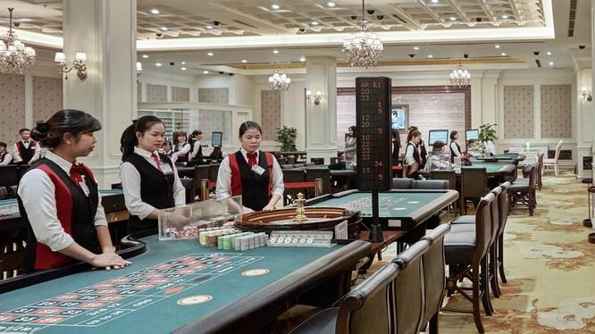 CTCP Quốc tế Hoàng Gia là chủ sở hữu khách sạn Royal Hạ Long, đồng thời là đơn vị vận hành casino duy nhất tại Quảng Ninh (Nguồn: RIC)
