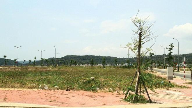 Đất nền tỉnh lẻ đang được nhiều nhà đầu tư quan tâm. Ảnh: Thành Nguyễn