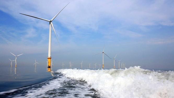 BCG Energy huy động 1.000 tỉ đồng đầu tư vào dự án điện gió hơn 5.500 tỉ đồng ở Cà Mau (Ảnh: Internet)