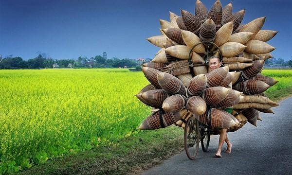 Người đàn ông đang chở những chiếc đó/giỏ tre đi bán ở Hưng Yên, Việt Nam của tác giả Lý Hoàng Long. Ảnh: TPOTY/Ly Hoang Long