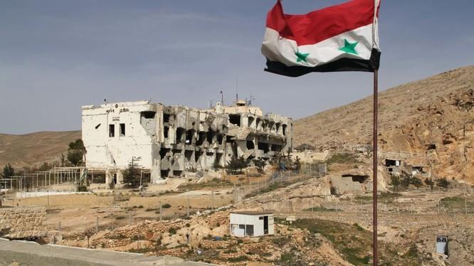 Syria nhận 15 tấn hàng viện trợ nhân đạo của nghị sĩ Nga