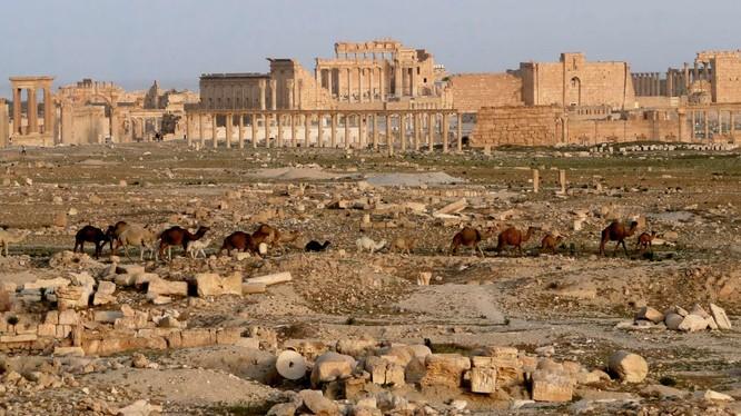 Lính cảm tử Nga vô hiệu hóa 12.000 quả bom ở Palmyra