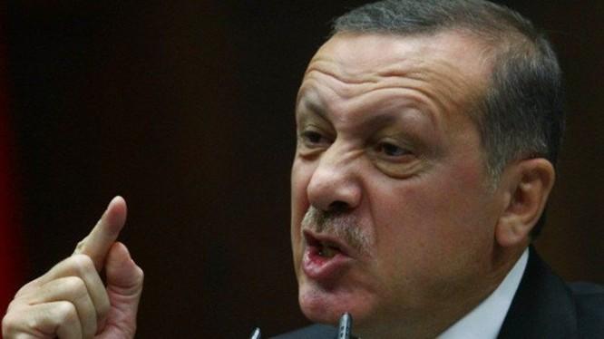 """Báo Đức: Các con của Erdogan """"tắm trong tiền"""""""