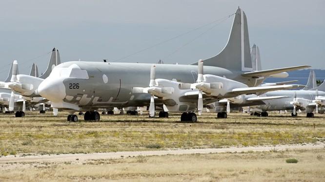 Các chiếc P-3 Orion được bảo quản ở nghĩa địa máy bay Davis-Monthan ở bang Arizona - Ảnh: CodeOne