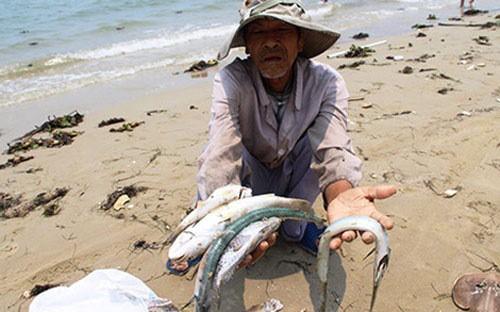 Formosa đã thừa nhận xả thải gây tác hại đến môi trường?