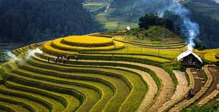 Ngày 1/11/2011, Bộ Văn hóa - Thể thao và Du lịch đã chính thức công nhận ruộng bậc thang của Hoàng Su Phì là Di tích Quốc gia.