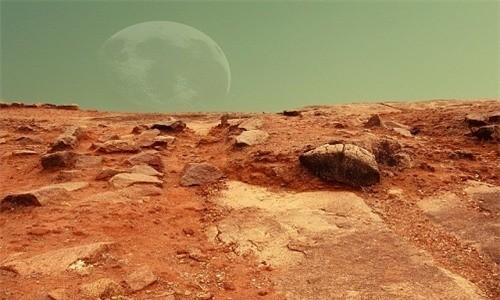 NASA đang nghiên cứu để tìm ra loại cây có thể trồng trên sao Hỏa. Ảnh: Public Domain.