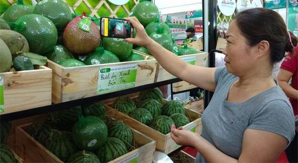 Người tiêu dùng truy xuất nguồn gốc trái cây bằng smartphone thông qua mã QR code.