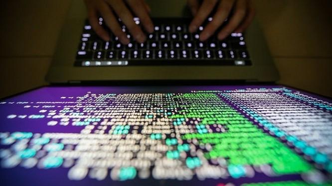 Rất nhiều hệ thống máy tính tại các doanh nghiệp lớn đã bị đình trệ vì Petya như hãng quảng cáo WPP của Anh, công ty vật liệu xây dựng Saint-Gobain của Pháp, nhiều công ty dầu thép của Nga…
