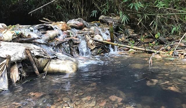 Ô nhiễm nguồn nước đầu nguồn Sông Đà gây ảnh hưởng nghiêm trọng tới chất lượng nước cung cấp cho người dân Hà Nội.